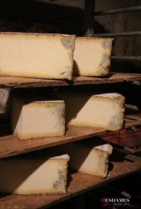 bleu termignon annecy