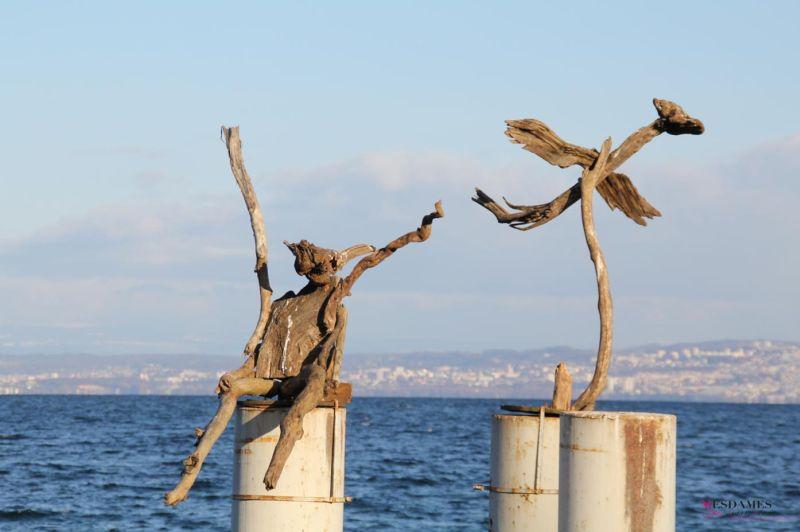 Id es sorties r gion annecy blog for Bois flotte suisse