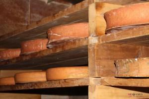 raclette et abondance annecy